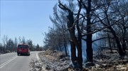 Kythira wildfire abating after weekend of major damages
