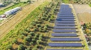 TTF to sell northern Greece photo-voltaic parks to Chinese multinational SPI Energy Ltd.